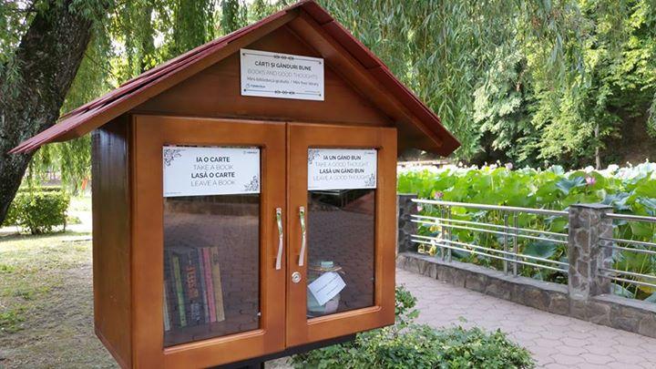 biblioteca-lacul-cu-nuferi