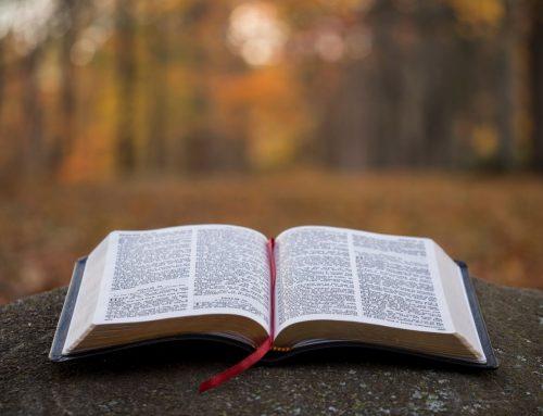 Ca să nu te lași cuprins de frică şi să nu îţi pierzi speranţa, citește acestă carte!